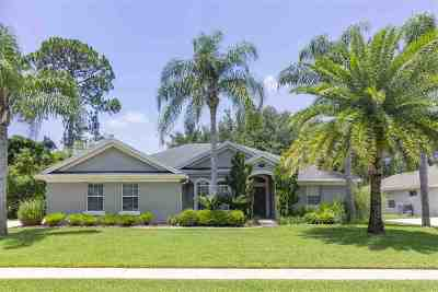 St Augustine Single Family Home For Sale: 309 Point Pleasant Drive