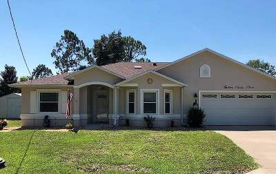 Palm Coast Single Family Home For Sale: 16 Poppy Place