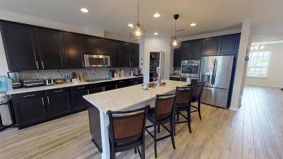 St Augustine Single Family Home For Sale: 111 Estero Ct