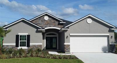 St Augustine Single Family Home For Sale: 161 Meadow Crossings Dr