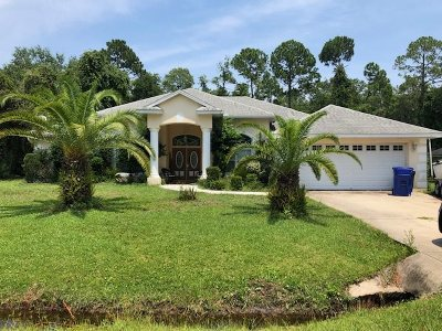 St Augustine Single Family Home For Sale: 6780 Sabal Palm Dr