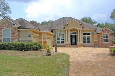 St Augustine Single Family Home For Sale: 323 Sophia Terrace