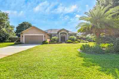 St Augustine Single Family Home For Sale: 330 Orchis Rd.