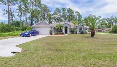 Palm Coast Single Family Home For Sale: 2 Brian Ln