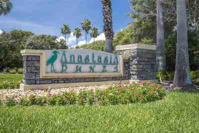 Anastasia Dunes Residential Lots & Land For Sale: 371 Ocean Forest Dr