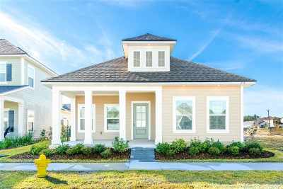 St Augustine Single Family Home For Sale: 193 Clarys Run