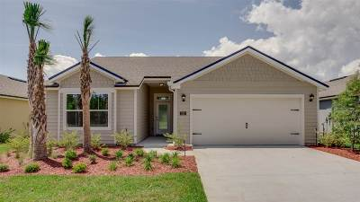 St Augustine Single Family Home For Sale: 317 Palace Drive