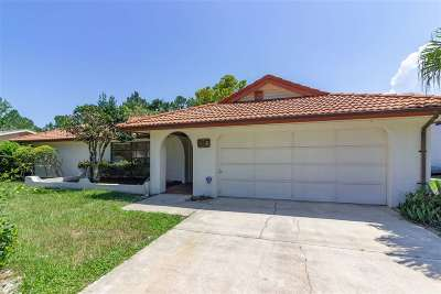Palm Coast Single Family Home For Sale: 20 Blasdell Ct
