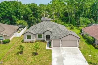 Palm Coast Single Family Home For Sale: 98 Evans Drive