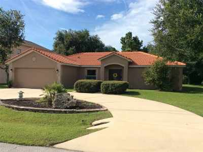 Palm Coast Single Family Home For Sale: 34 Leidel Drive