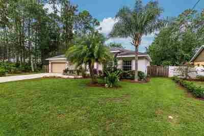 Palm Coast Single Family Home For Sale: 37 Botany Lane