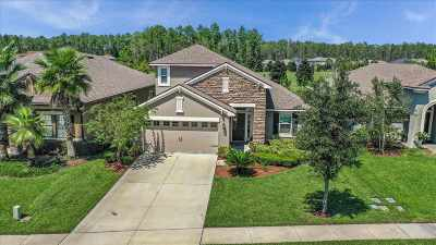 Ponte Vedra Single Family Home For Sale: 224 White Marsh Dr