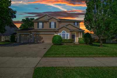 St Augustine Single Family Home For Sale: 389 Summercove Circle