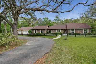 St Augustine FL Single Family Home For Sale: $1,199,900