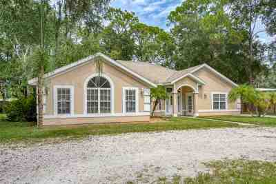 St Augustine Single Family Home For Sale: 278 State Road 16
