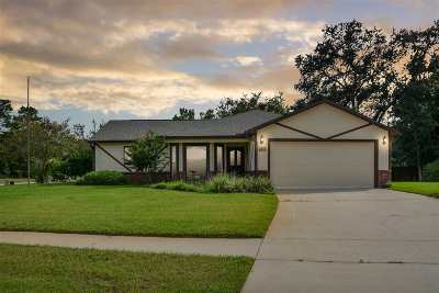 St Augustine Single Family Home For Sale: 668 Cira Ct