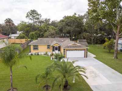 St Augustine Single Family Home For Sale: 229 Covino Avenue