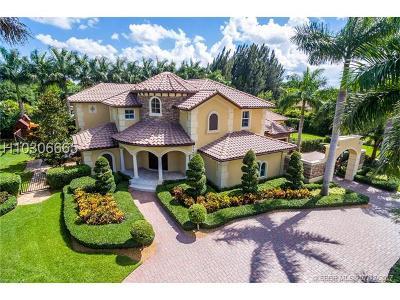 Davie Single Family Home For Sale: 14280 S Jockey Cir