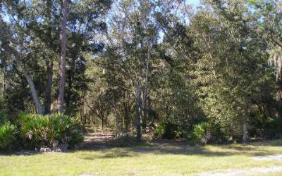 Residential Lots & Land For Sale: 3015 Woodland Creek Trl
