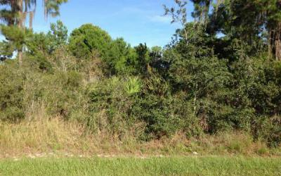 Sebring Residential Lots & Land For Sale: 3325 Manor Dr