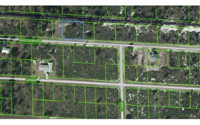 Lake Placid Residential Lots & Land For Sale: 3443 Rhododendron Rd
