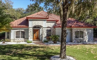 Single Family Home For Sale: 3891 Enchanted Oaks Ln