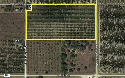 Avon Park Residential Lots & Land For Sale: 233 Cr 17a N