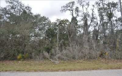Highlands County Residential Lots & Land For Sale: 572 Cook St