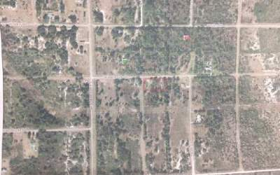 Avon Park FL Residential Lots & Land For Sale: $20,000