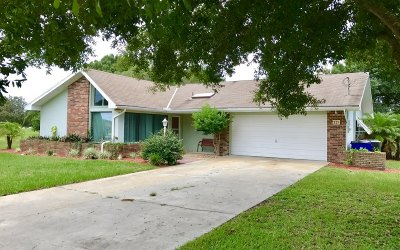 Avon Park, Lake Placid, Lorida, Sebring Single Family Home For Sale: 221 Greensview Dr