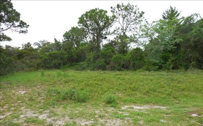 Residential Lots & Land For Sale: 1801 Sunrise Dr