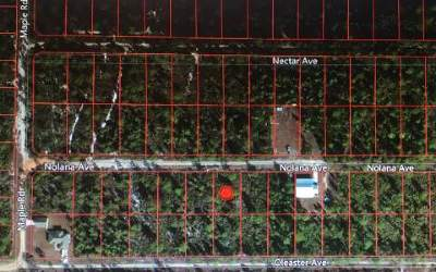 Residential Lots & Land For Sale: 1817 Nolana Ave
