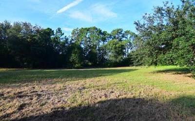 Lake Placid Residential Lots & Land For Sale: 124 Lavender Ave