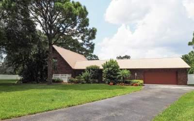 Lake Placid, Sebring, Lorida, Avon Park, Venus Single Family Home For Sale: 1390 Lake Josephine Dr