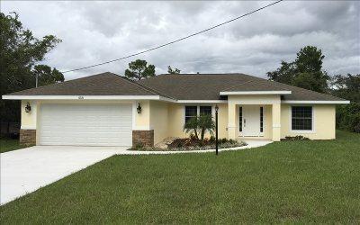 Lake Placid Single Family Home For Sale: 438 Grant Ave NE