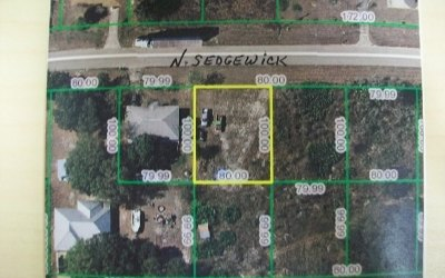 Avon Park Residential Lots & Land For Sale: 3174 N Sedgewick Rd