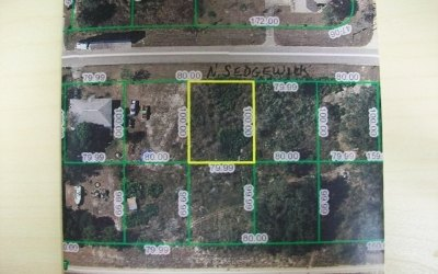 Avon Park Residential Lots & Land For Sale: 3188 N Sedgewick Rd