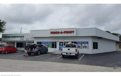 Commercial For Sale: 1421 Us 27 N