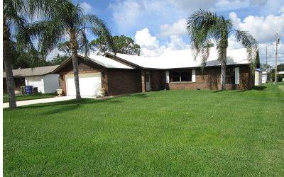 Sebring Single Family Home For Sale: 217 Lark Ave