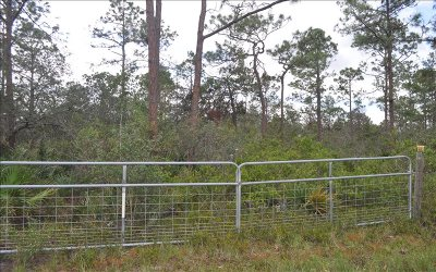 Sebring Residential Lots & Land For Sale: 9131 Canter Path