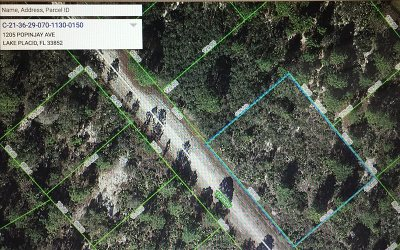 Lake Placid Residential Lots & Land For Sale: 1205 Popinjay Avenue