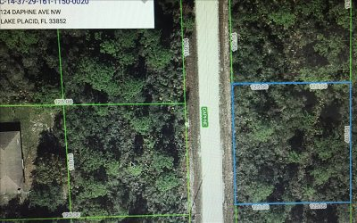 Lake Placid Residential Lots & Land For Sale: 124 NW Daphne Avenue NW
