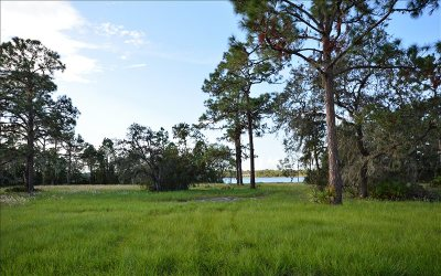 Residential Lots & Land For Sale: 4042 Camp Shore Dr