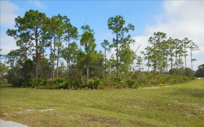 Residential Lots & Land For Sale: 3032 Woodland Creek Trl