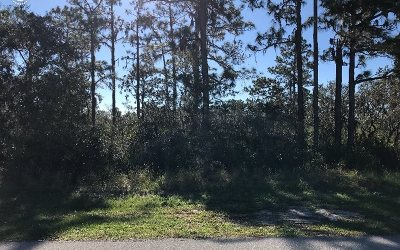 Residential Lots & Land For Sale: 4839 Myrtle Beach Dr.
