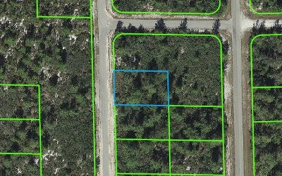 Lake Placid Residential Lots & Land For Sale: 927 Laurelwood St