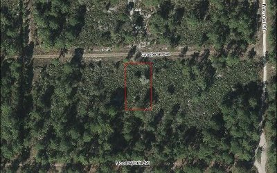 Residential Lots & Land For Sale: 216 Grosbeak Ave