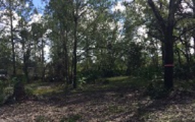 Avon Park Residential Lots & Land For Sale: 5125 Michon Path