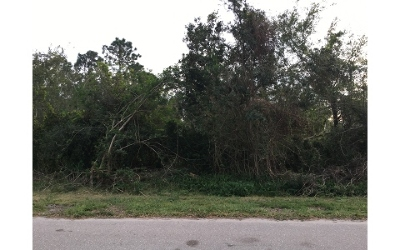 Residential Lots & Land For Sale: 1735 Azalea Ter