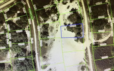 Sebring Residential Lots & Land For Sale: 334 Cinema Drive